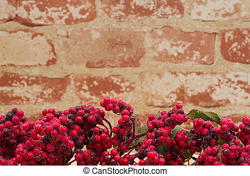 Old fashion Christmas berry background