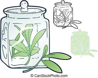 tarragon - Old fashioned glass jar with a sprig of tarragon