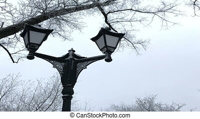 Old-fashioned lantern in a winter park. Everything around is...