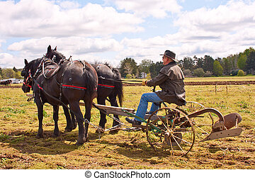 Old Fashioned Plowing