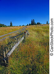 old fence and idilic landscape - landscape