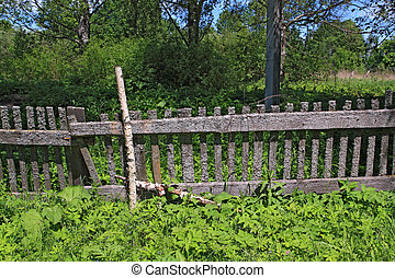 old fence in green herb