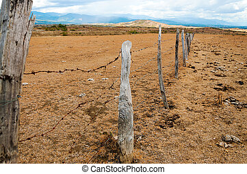 Old Fence Posts - Old weathered fence posts in a dry arid...