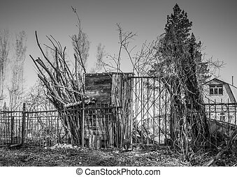 Old Firewood and Shed