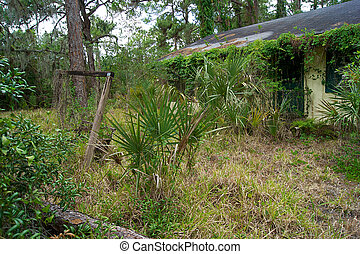 old florida abandoned overgrown home