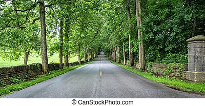 Old Frankfort Pike in Kentucky is lined with historic stone...