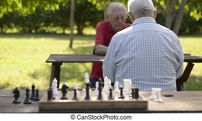 Old friends playing chess game