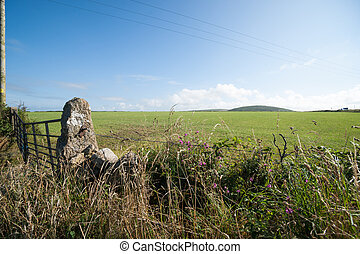 Old gate and rock post
