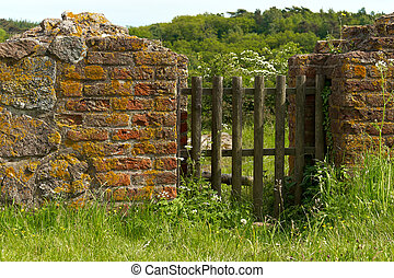 Old Gate - Old wood gate in the brick wall