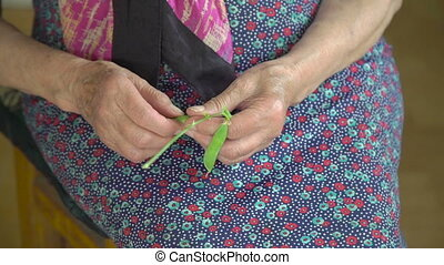 Old grandmother's hands shelling green peas in the village