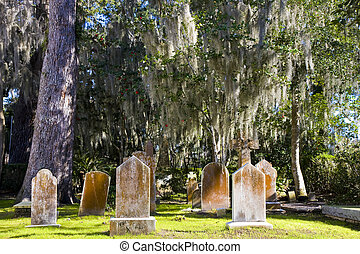 An old cemetery in the southern United States under oak trees and spanish moss