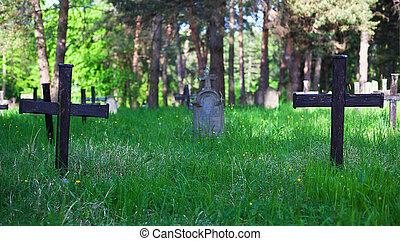Old Graveyard in Park