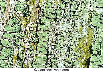 Old green cracked tree bark texture
