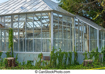 Old Green House 2
