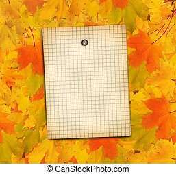 Old grunge paper with autumn maple branch leaves