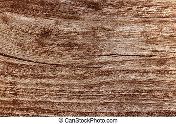 Old grunge wood texture background. photo