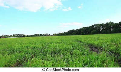 old hay field at susnset in summer fly video