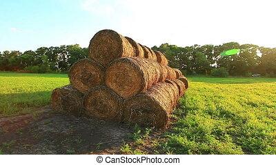old hay field