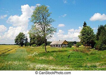 Old house in lithuanian village. Kupiskis district.