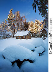 Old house in snowy forest