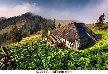 Old house in the mountains in spring