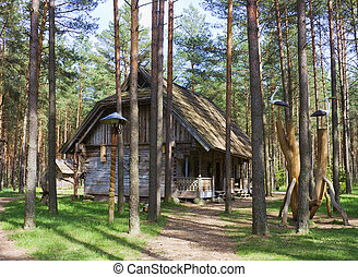 old house in the woods