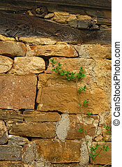Old house stone wall, detail