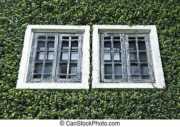 Old house window.