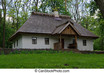 old house with a thatched roof among the trees