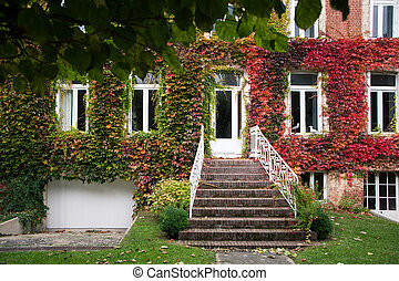 Old house with autumn leaves on the wall