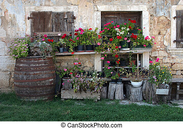 Old house with flowers