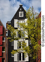 Old House with White Window Shutters in Amsterdam