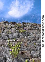 old irish wall 3