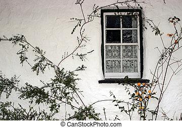 old irish window 2