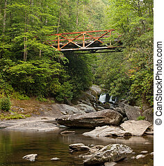 Old Iron Bridge over Forest River - An old rusted iron...