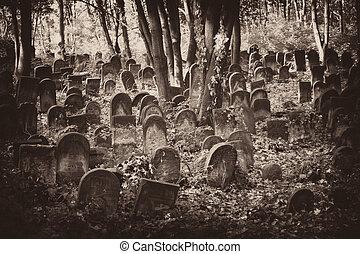 Jewish cemetery - Old Jewish cemetery, visible gravestones...