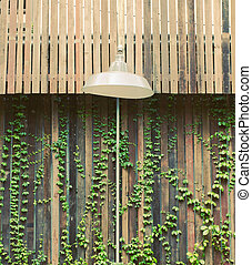 Old lamp hanging outdoor with wooden wall and ivy plant