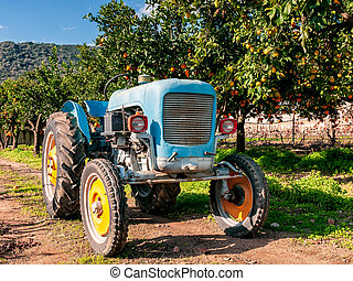 Old light blue tractor for agricultural crops