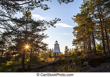 old lighthouse in the woods