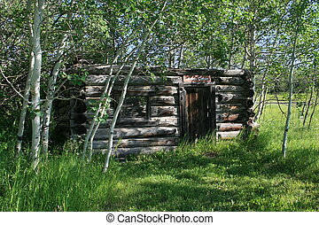 Old log cabin in the woods - An old log cabin surrounded by...