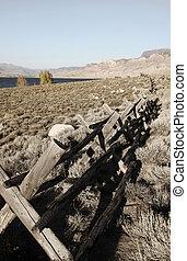 Old log Fence