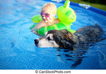 Old Loyal Pet Dog Swimming in Backyard Pool with Baby Girl...