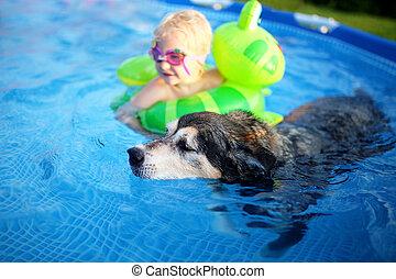 Old Loyal Pet Dog Swimming in Backyard Pool with Baby Girl...