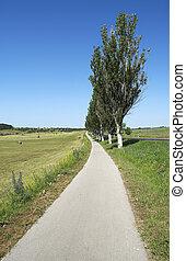 Old main road
