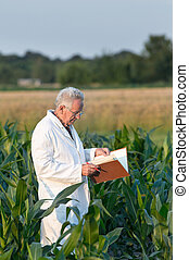Old man agronomist in corn field