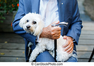 Old man carrying funny dog in his arms
