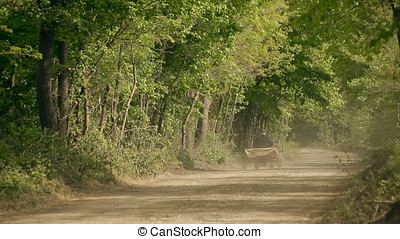 Old Man Driving Motorized Cart on Forest Gravel Road...