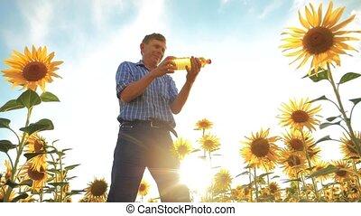 old man farmer holding in hand a plastic bottle sunflower...