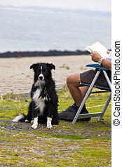old man reading a book with his dog