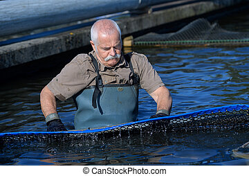 old man taking care of his fish farm